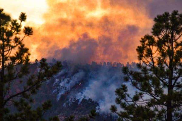 Traveling to Colorado During Wildfire Season? What to Know Before You Go.